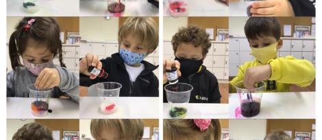 """Crianças dos Níveis 3 da Unidade Pindorama realizam experiência """"Explosão das cores"""""""
