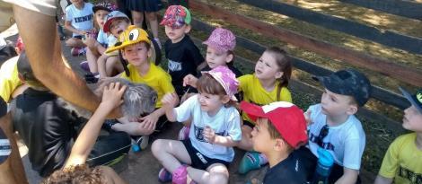 Descobertas e diversão no passeio de estudos dos Níveis 5 ao sítio Quinta da Estância