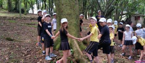 Educação ambiental e diversão na imersão em Língua Inglesa dos alunos bilíngues