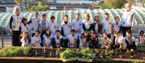 Monitores Ecológicos realizam colheita na horta escolar da Unidade Pindorama
