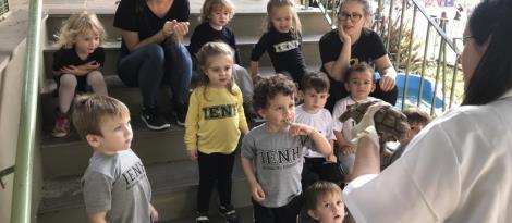 Nível 2A da Educação Infantil explora espaços da Unidade Pindorama para estudar os quelônios